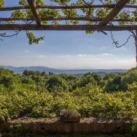 Property with pool and panorama in Tuscany