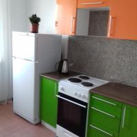 Apartment on Vodopyanova 4