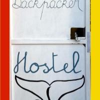 Hostel La Ballena Backpacker