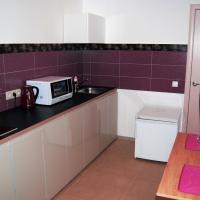 Business Apartment Vologda Center