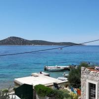 Apartman Vesna on island Prvic
