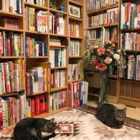 SUMIE's tiny Library