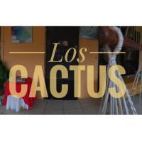Hospederia Los Cactus