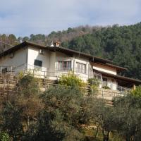 Villa La Selvaccia
