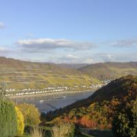 Schau-Rhein