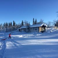 Our Arctic Paradise