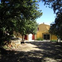 Une maisonnette dans la pinède et les oliviers