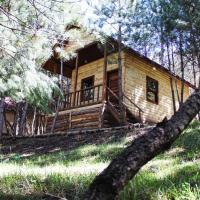 Çam Pınarı Doğa Evleri