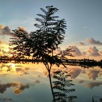 Titan Maldives Sunsetview