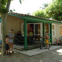 Camping Les Palmiers Carqueiranne