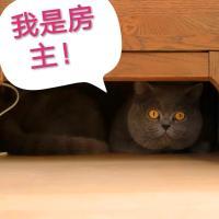 Anaya Huangjin Hai'an Resort Three-Bedroom Guesthouse - Blue Cat