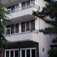 Levi Apartment