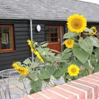 Blashford Manor Holiday Cottage - The Dartmoor Cottage