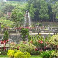Dhangin Taman