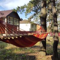 Uiutnyi dom v sosnovom boru