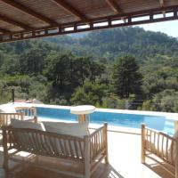 Olive Villa