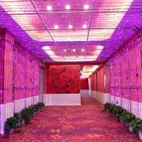 Ifeel Theme Hotel