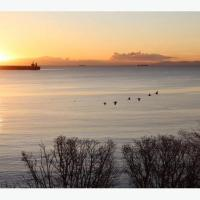 Ocean Front, Brand New Luxury Travel Trailer