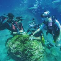 Divers Delight Fethiye