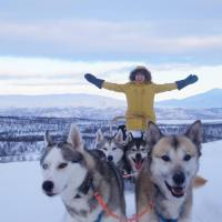 Abisko net Hostel & Huskies