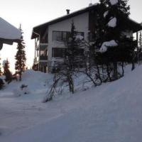Yllasjarvi Villa Sleeps 8 WiFi