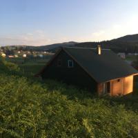 Hıdırnebi dağ evi