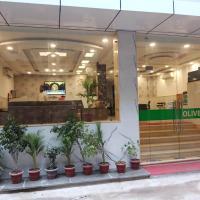 Airport Hotel Olive, Mahipalpur