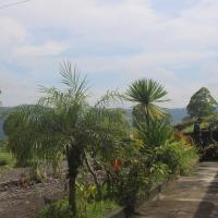 Mount Batur Guest House