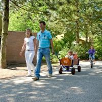 Roompot Vakantiepark de Weerterbergen