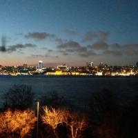 The Bosphorus Perch