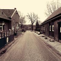 Guesthouse Kronenbergerhof