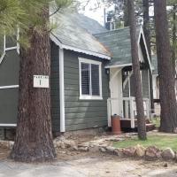 Teddy's Lodge