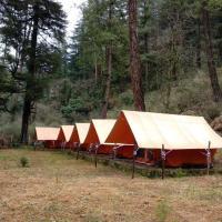 Tosh Shiva camping