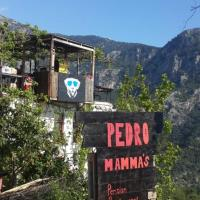 Pedro Mamma's Pension