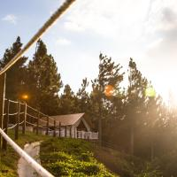 Luxury Camping Panama