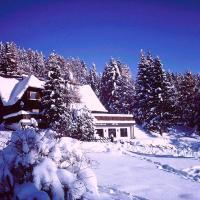 Almgasthof Judenburger Hütte