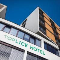 Toplice Hotel