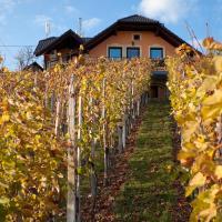 Vineyard Cottage Bregac