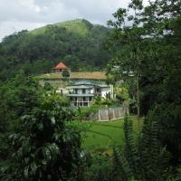 The Paddyfield Hideaway and Octogan
