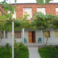 Guesthouse Vashlovani
