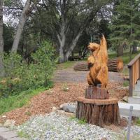 Cedar Mountain Lodge