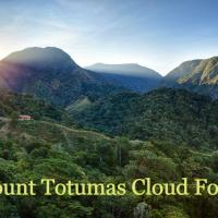 Mount Totumas Cloud Forest