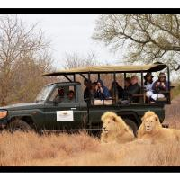 Elandela Private Game Reserve and Luxury Lodge