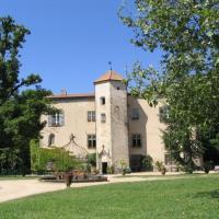 Chateau De La Chassaigne