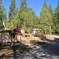 Yosemite Lakes Bunkhouse Cabin 29