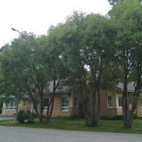 Kuusitie Apartment