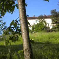 La Casa Dicuccaro