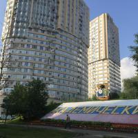 Apartment on Profsouznaya