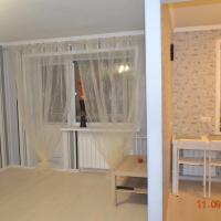Apartments on Dusi Kovalchuk 266/1