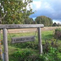 Liivaku stables